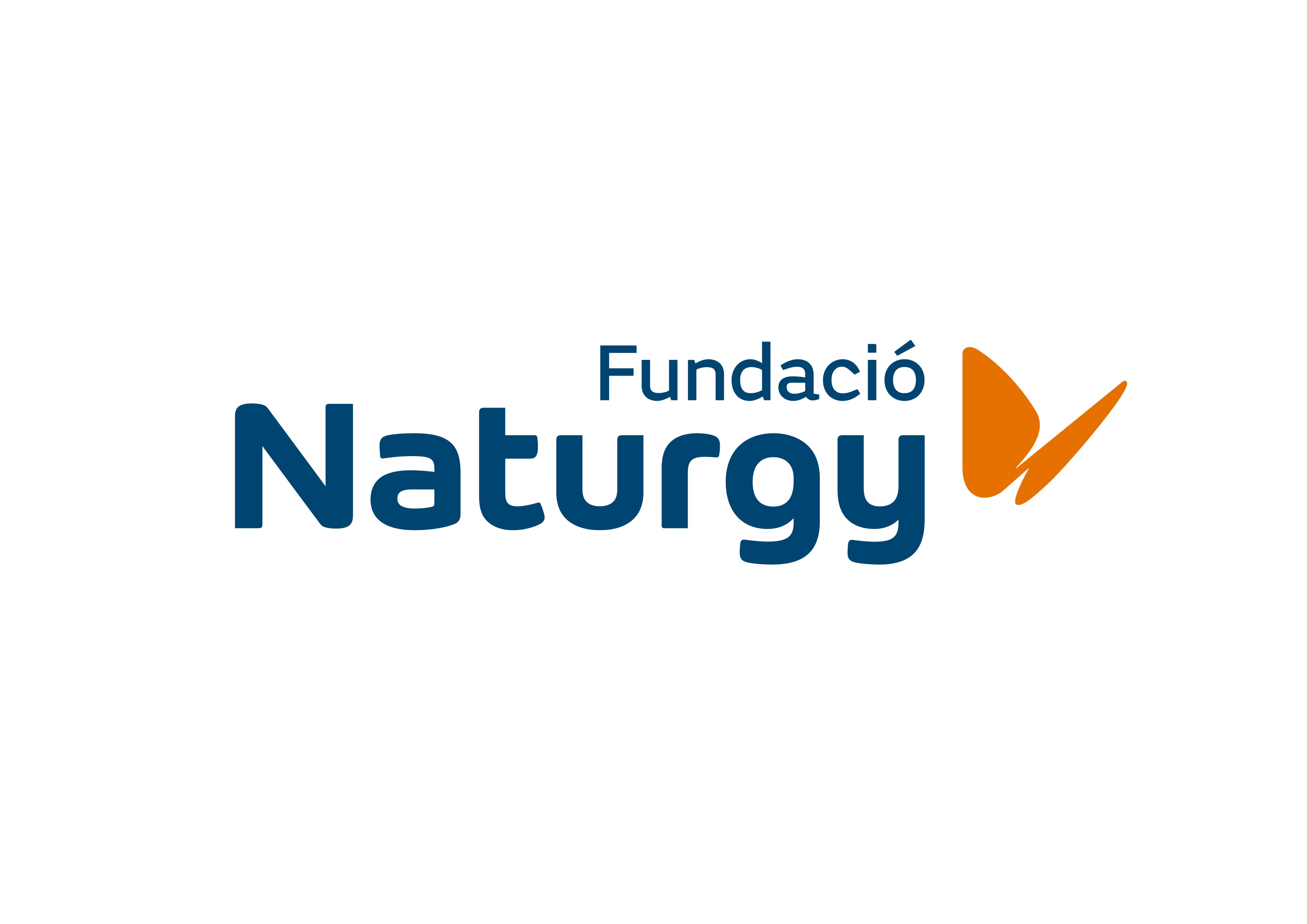 Fundacion_RGB_Principal_Positiva_CAT