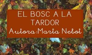 El bosc a la tardor (Marta Nebot)