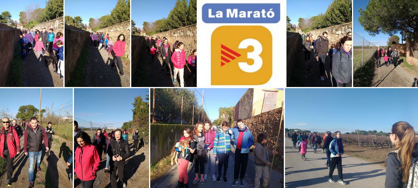 maratotv32016