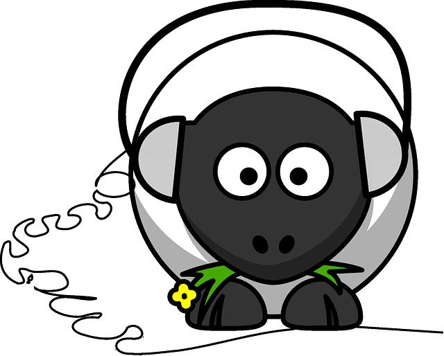 sheep-158247_640