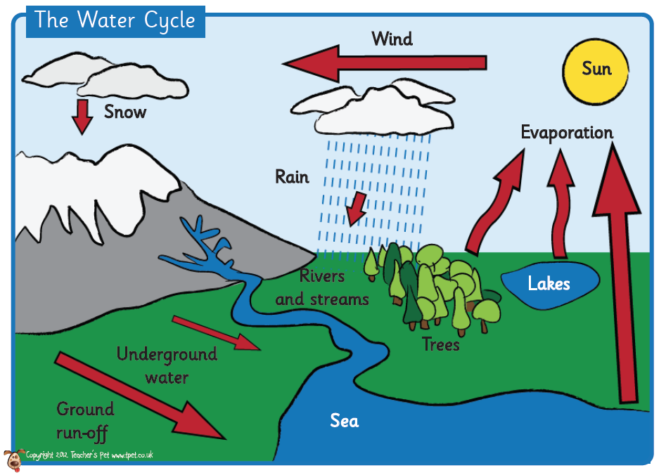water cycle diagram for 5th grade worksheets tataiza free printable worksheets and activities. Black Bedroom Furniture Sets. Home Design Ideas