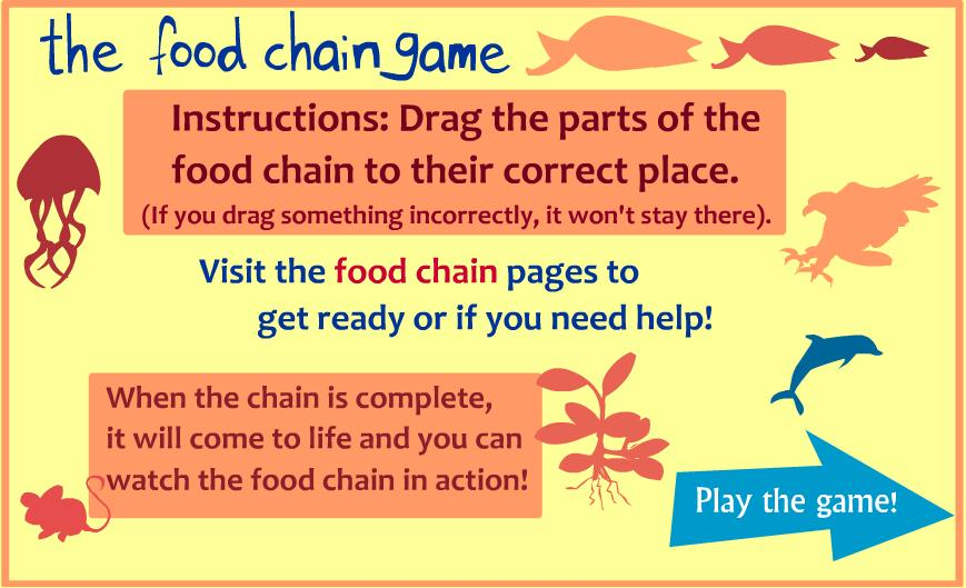 Food chain game 5th grade