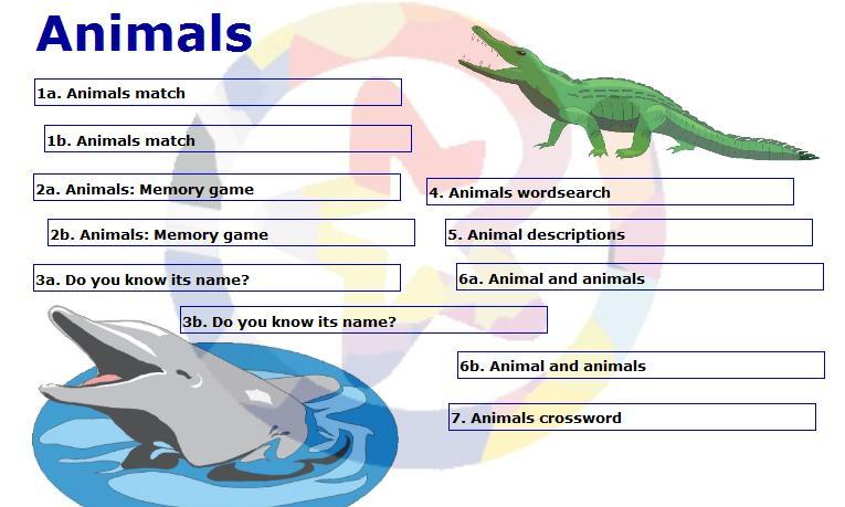 animals-activities