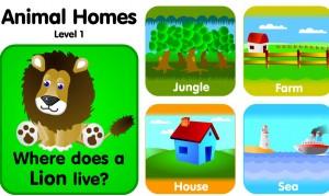 animal-homes