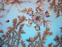 cristalls-dh2o.jpg