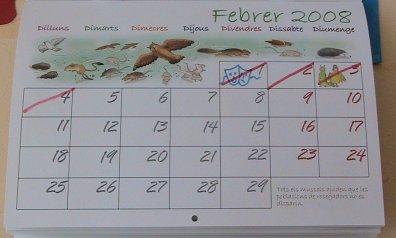 numeros-calendari.jpg