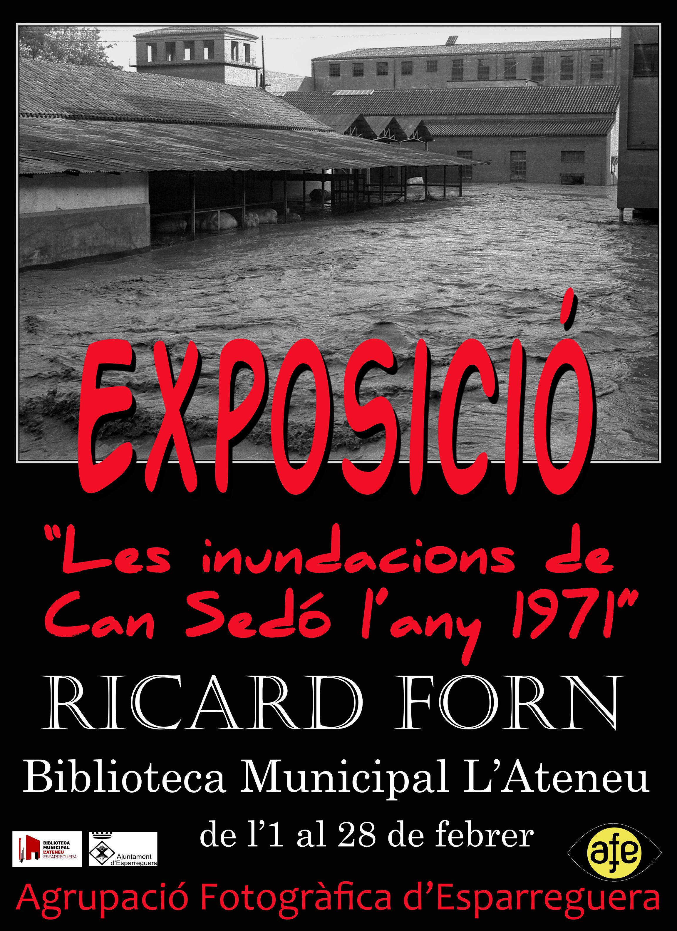 exposicio-ricard-forn