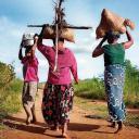 Dones portant llenya i menjar