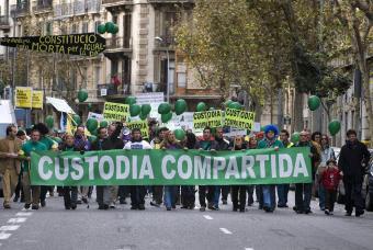 manifestacion_custodia_compartida