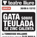 gata_teulada_zinc_calenta