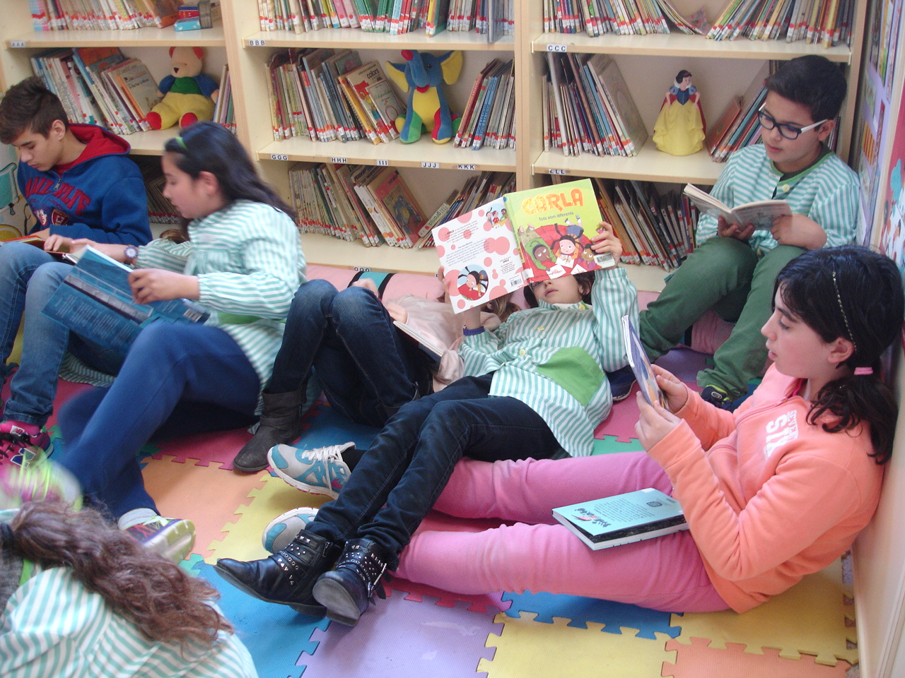 bibliocabas cs (8)