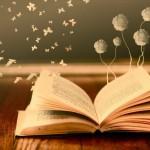 escriure 3 ( imaginació)