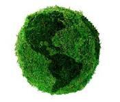 planeta verd