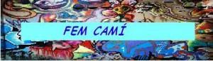 widget-fem-cami