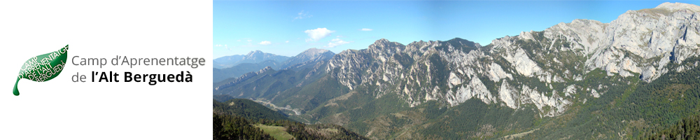 Camp d'aprenentatge de l'Alt Berguedà