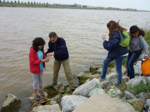 riu llobregat delta-