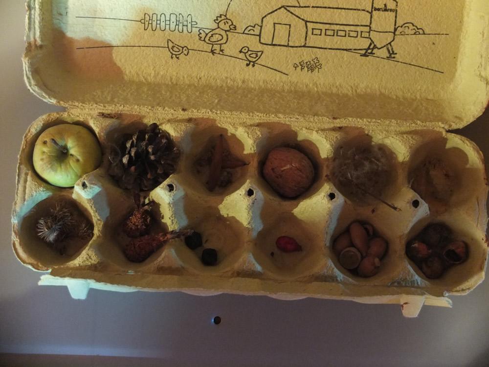 capsa de tresors
