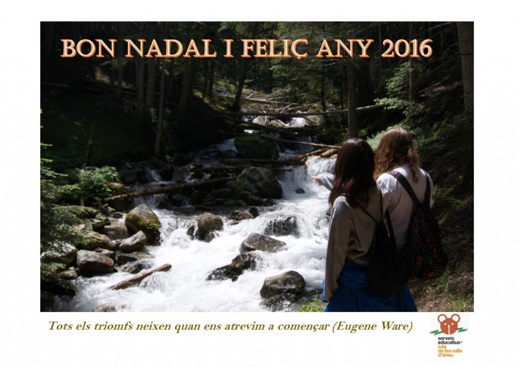 Felicitació CdA Valls d'Àneu (2016)