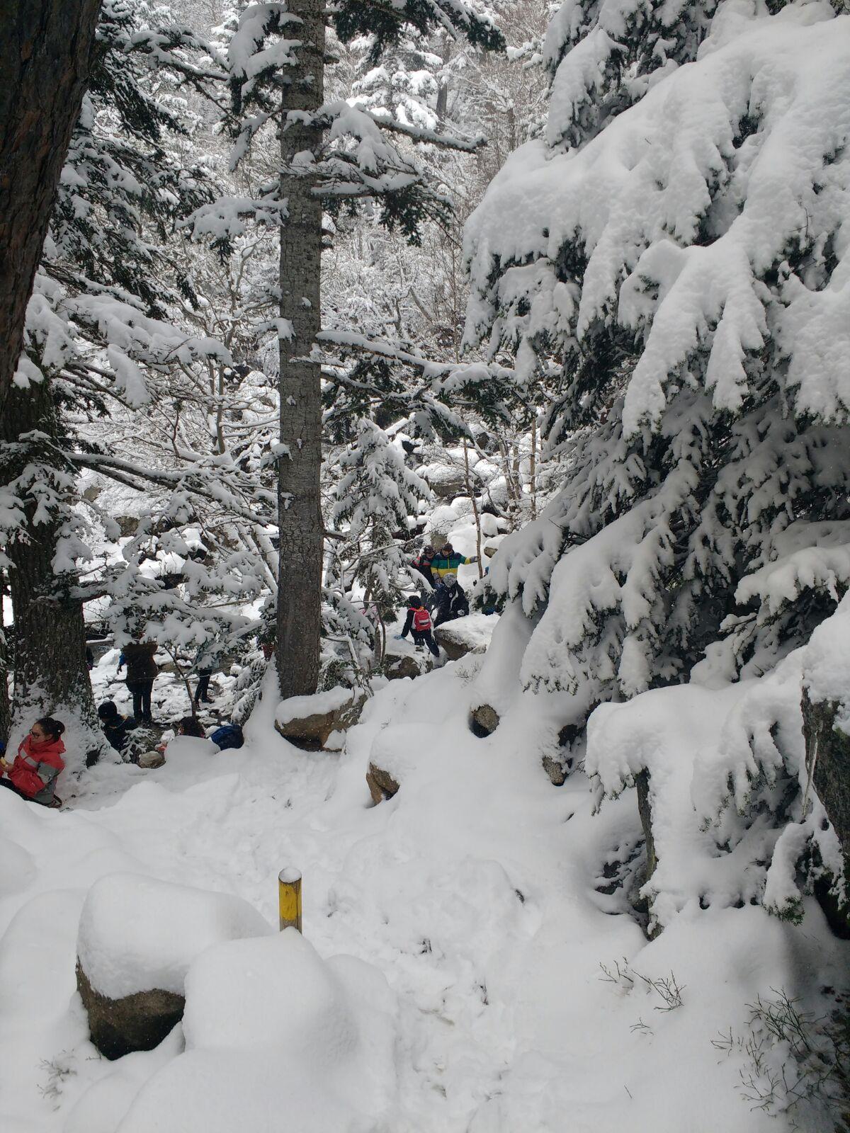 nevada abril 2017