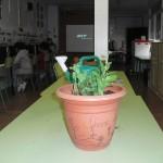plantes-007