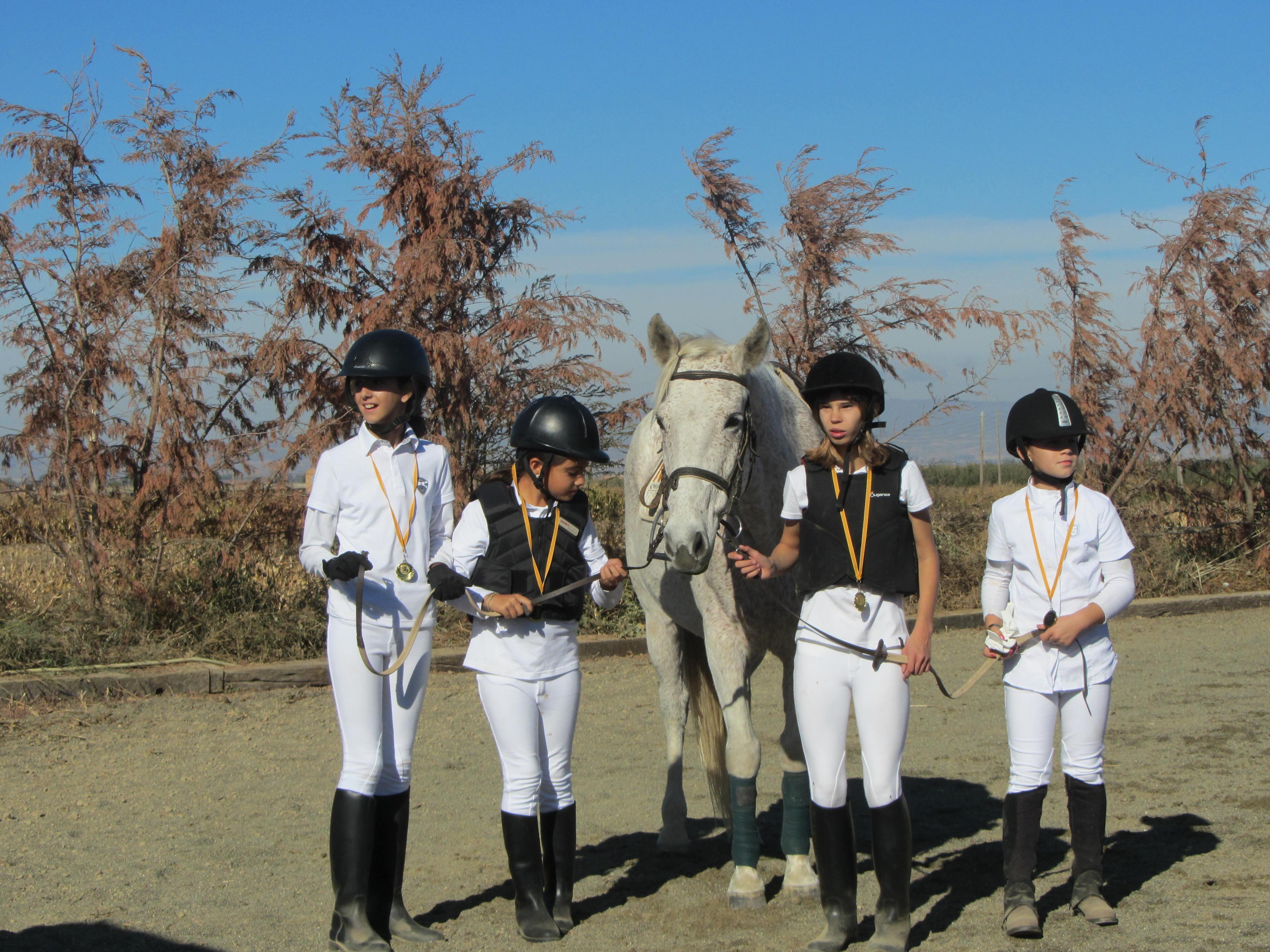 sals cavalls 3-11-13