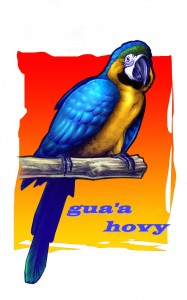 Ens anomenem la classe dels gua'a hovy, papagai blau en guaraní.