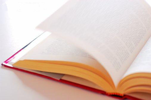 llibre.jpg