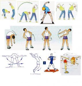 Exercicis escalfament tronc