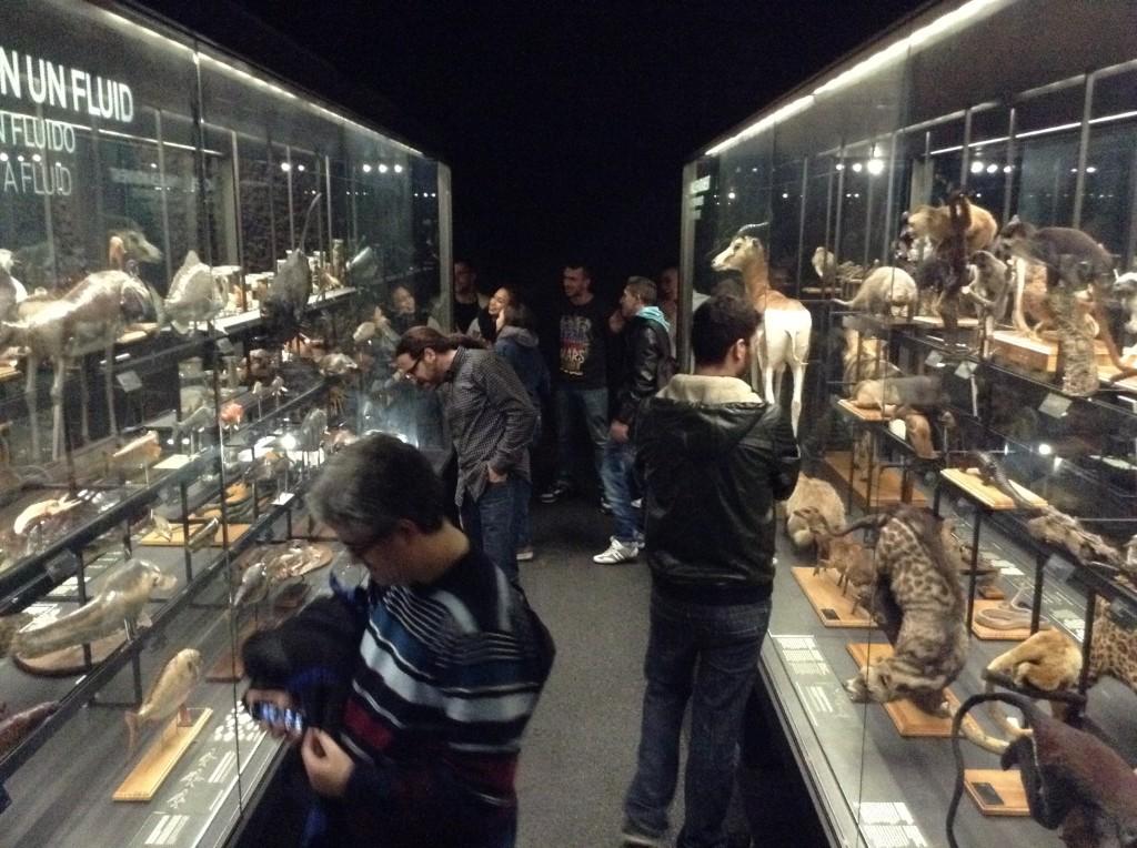Sortida amb els estudiants del CAM al museu de Ciències naturals
