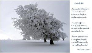 hivern.jpg