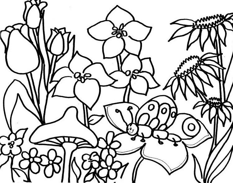 Dibuixos primavera - Imagui