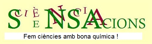 logo2b1