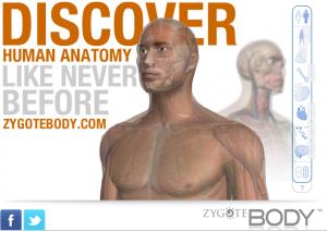 Imatge de l'aplicació Zygote Body.