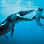 Pliosaurus funke
