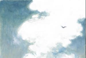 il·lustració de Wouter Tulp