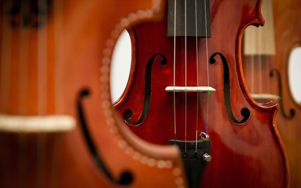 Bloc de l'orquestra de corda de l'Anicet de Pagès