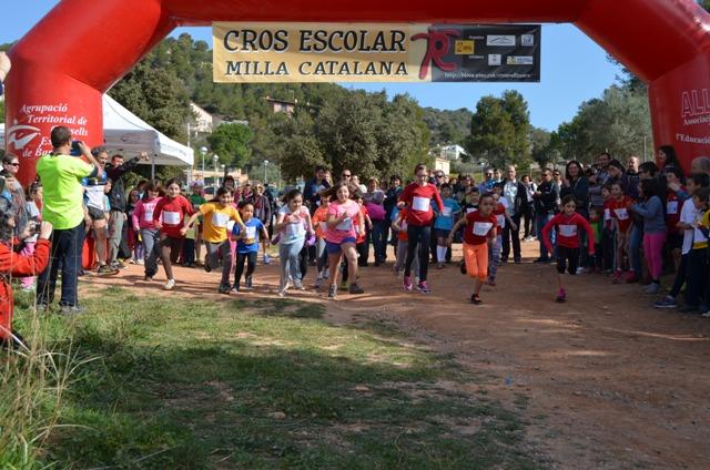 CROS 2015 TL (37)