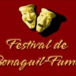 festival-3