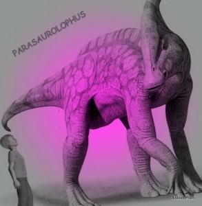 parasaurolophusx1