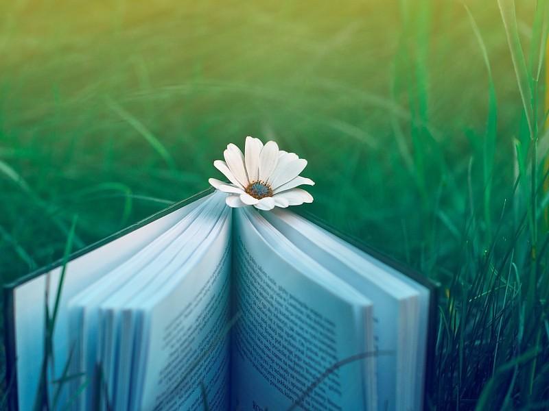 primavera-y-poesia