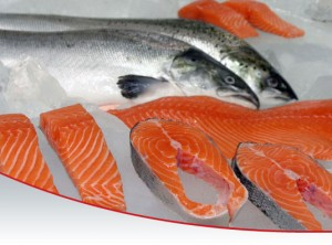 salmon_home