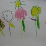 Dibuixem flors del nostre hort