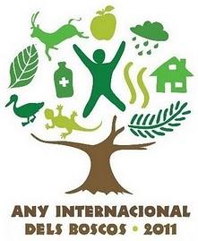anyinternacionalboscos20111