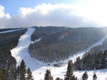 bosque-2-esquiada