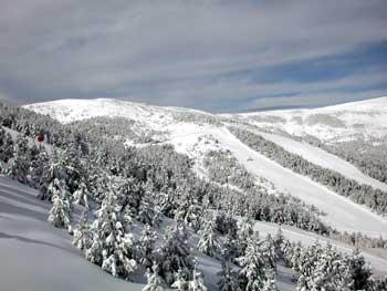 bosque-esquiada