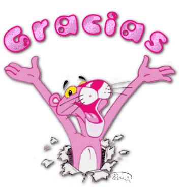 20100504163953-gracias-pantera