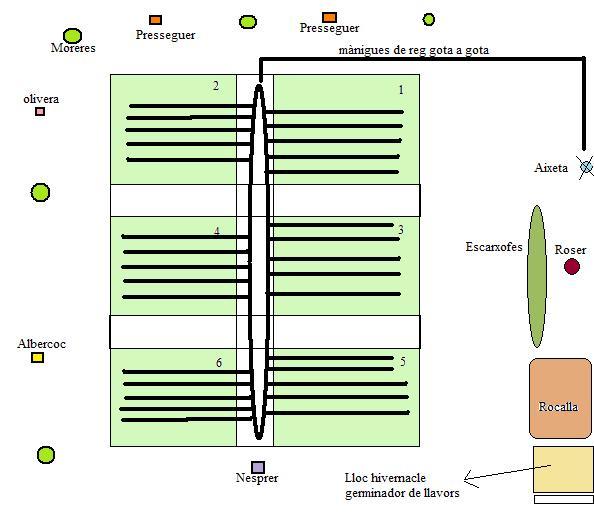 Dibuix en planta de l'hort, a data Desembre de 2009