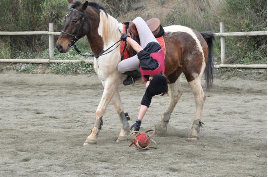 horseball11