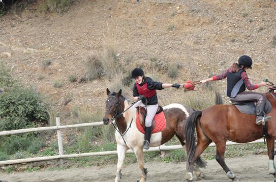 horseball3