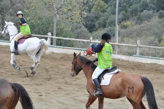 horseball5